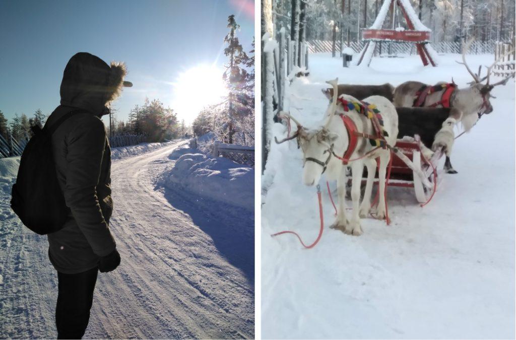 Vacanță în Laponia, zapada, soare, sanie trasa de reni