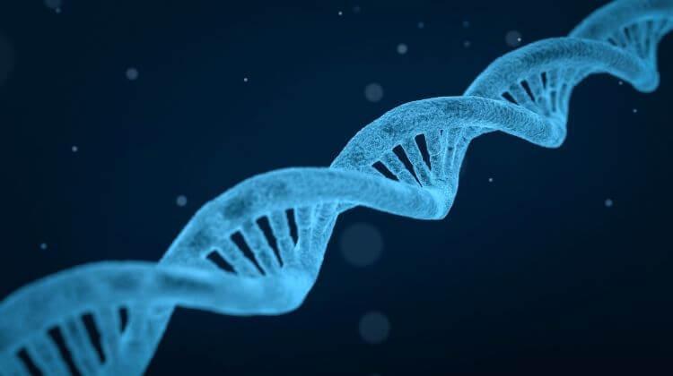 facultati-pentru-stiintele-naturii-despre-facultatea-de-biologie-1